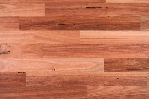 Bluegum Engineered Hardwood Flooring Boral