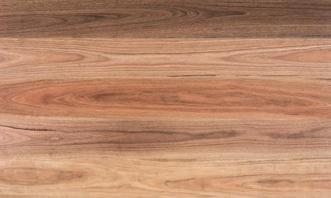 Spotted Gum Engineered Hardwood Flooring Boral